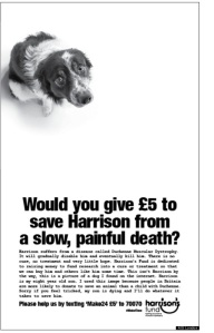 Harrison_s_Fund_Advertising